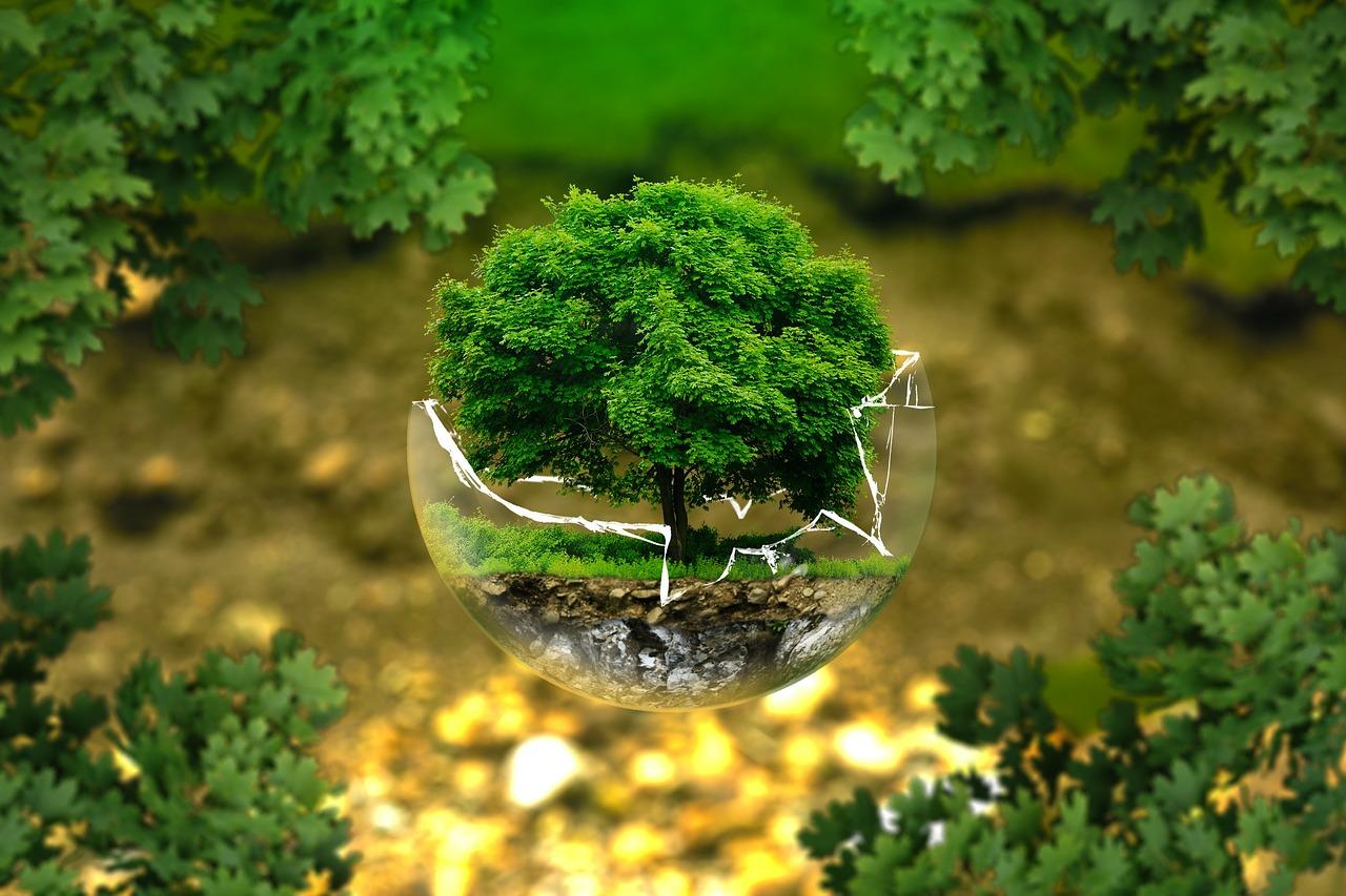 見える歴史 vol.11 「人間環境宣言の採択」